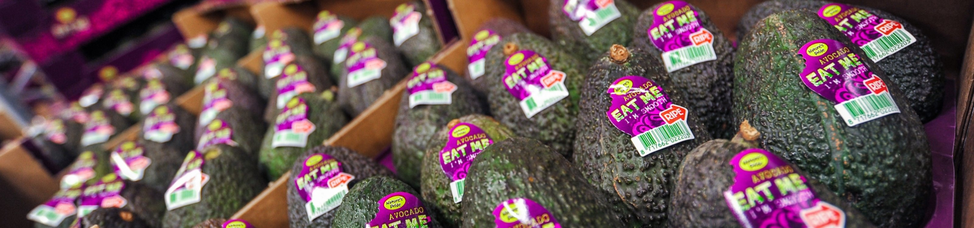 software-rijpen-ripening-avocado-erp-software-dynamics-natures-pride-scanning-dynamics-schouw.jpg