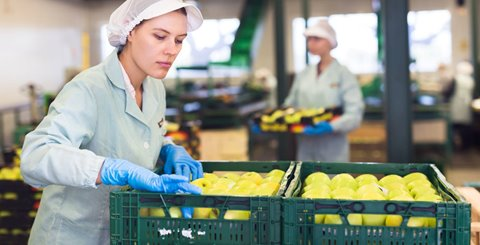Is Sub-Quality Produce Your Best Profit Opportunity?